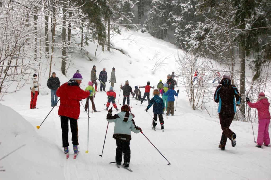 Distanču slēpošana Ogres Zilajos kalnos. Foto: D.Voitkeviča