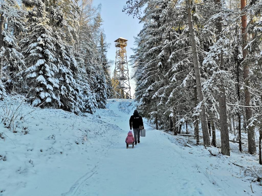 Ogres Zilo kalnu skatu tornis